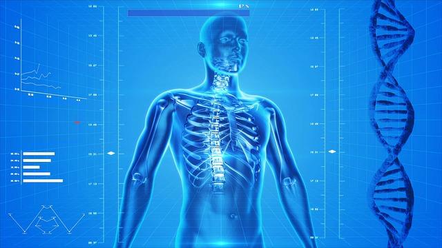 szkielet kości ból